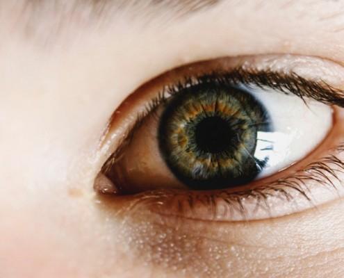 el_ojo_humano
