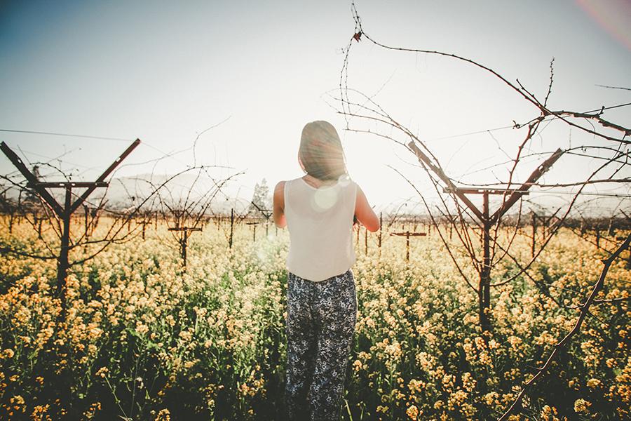 Paseo por el campo en floración